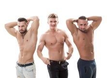 Shot of sexy muscular men posing at camera Royalty Free Stock Photos