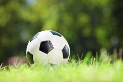 Shot of a soccer ball on a grass Royalty Free Stock Image