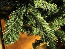 Shot of some branches of a Christmas tree royalty free stock images
