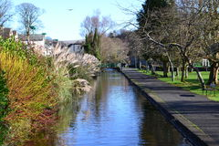 Tavistock Canal 2 Stock Images
