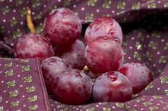 Grapes on a piece of bordeaux cloth. Shot to some grapes on a piece of bordeaux cloth royalty free stock images