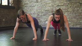 Sportswomen high fiving after doing push ups together. Shot of two fit and toned young fitness women exercising at the gym together, doing push ups and high stock video