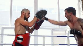 Shot of two male mma fighters practicing together. Shot of two powerful mixed martial arts athletes sparring in the boxing ring. Kickboxing coach holding pads stock video