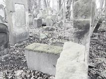 Jewish cemetery in Poland. A shot of a very old jewish cemetery in Krakow Poland royalty free stock images
