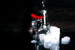 a shot of vodka, an alcoholic beverage, next to ice, fire, ice, red chili pepper. The concept of alcohol, spirits Royalty Free Stock Photos