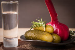 Shot of vodka with pickles cucumber and garlic Royalty Free Stock Images