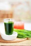 Shot of wheatgrass juice Stock Photos