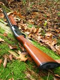 Shotgun, 12 gauge. Wood stocked shotgun, 12 gauge semiautomatic Stock Photos