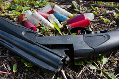 Shotgun and cartridges on the ground Royalty Free Stock Image
