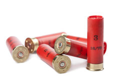 Shotgun cartridges isolated Stock Images