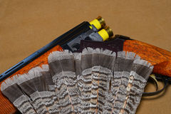 Shotgun with grouse feathers Stock Images