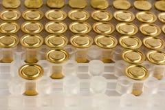 Shotgun primers in box, closeup Stock Images