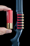 Shotgun shell Stock Image