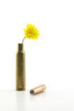 Shotgun shell with yellow little flower Royalty Free Stock Photos