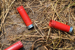 Shotgun Shells. After shooting a shotgun Royalty Free Stock Photo