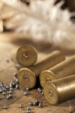 Shotgun shells and shot Royalty Free Stock Photos