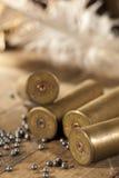 Shotgun shells and shot Royalty Free Stock Photos