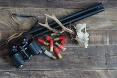 Hunting shotgun with cartridges and deer skull. Top view. Shotgun with superimposed guns and cartridges with roe deer skull Royalty Free Stock Photography