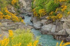 Shotover河峡谷 库存照片