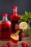 Shots and bottles of cranberry beverage Stock Images