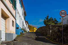 Shots from the Sao Rogue aisles on the Sao Miguel Island Stock Photography