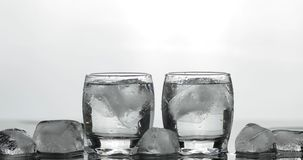Shots of vodka in glasses. White background royalty free stock image
