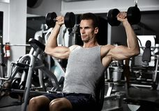 Shoulder bench press workout. Strong young man exercising with dumbbells in gym. Shoulder bench press workout stock photos
