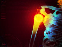 shoulder pain with the anatomy of a skeleton stock illustration