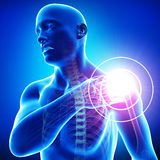 Shoulder pain of male. 3d rendered medical x-ray illustration of transparent  X-ray Anatomy of Shoulder pain of male in blue background Royalty Free Stock Photo