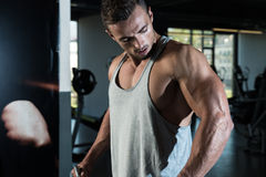 Shoulders Cable Lateral Raise Exercise Stock Image