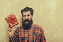 Shouting bearded man with red gift box with bow. Shouting bearded man, caucasian hipster, with long beard and moustache in plaid shirt with red gift box with bow Royalty Free Stock Image