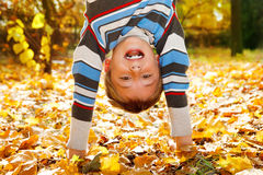 Shouting boy. Upside down on yellow leaves Stock Photography