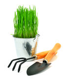 Shovel, aluminium bucket with grass, rake  garden tools Royalty Free Stock Photo