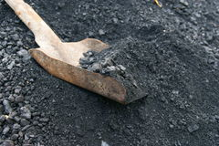Shovel and coal Stock Image