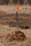 Shovel in dirt Stock Image