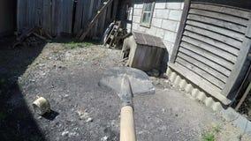 Shovel on the farm. Shovel on the farm POV video
