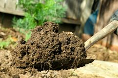Shovel full of dirt Stock Photography