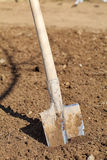 Shovel in the Ground  Stock Photos