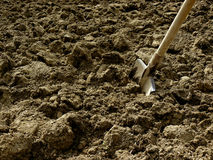 Shovel in the ground Stock Photography