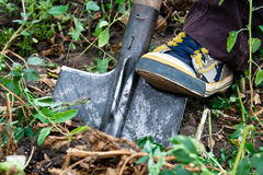 Shovel and gym shoes. Foot in gym shoes on shovel in ground Royalty Free Stock Photos