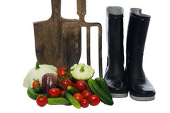 Shovel with a pitchfork stands next to a basket of vegetables stock images