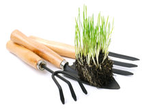 Shovel, rake, garden tools  with green root grass Royalty Free Stock Photo