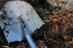 Shovel in soft earth Stock Image