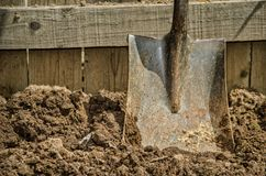 Shovel in the soil Royalty Free Stock Image
