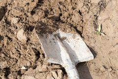 Shovel in the soil. In the park in nature Royalty Free Stock Photography