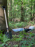 Shovel at the tree and man lying in the forest Stock Photos