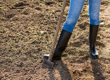 Shoveling in the garden at spring. Royalty Free Stock Photography