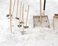 Shovels Stock Image