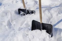 Shovels stuck in snowdrift. In a sunny winter day royalty free stock images