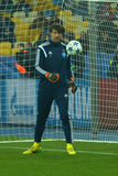 Shovkovskiy (GK) (C) Royalty Free Stock Photo